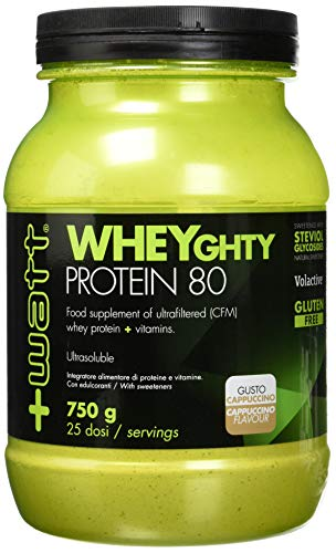 wheyghty protein 750g cappuccino