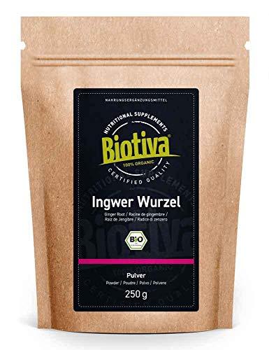 Zenzero in polvere Bio - 250g - Biologico e Puro - per tè allo zenzero o acqua allo zenzero - confezionato e imbottigliato in Germania