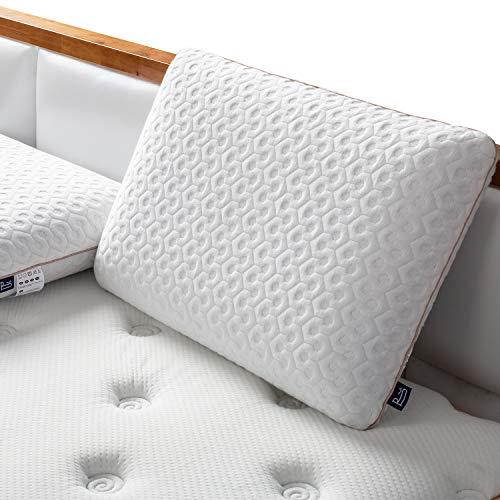 BedStory Cuscino Memory Foam 60x40cm, Cuscino Cervicale a Supporto Efficace per Tutte Le Posizioni, Cuscino Ortopedico per Riduce Dolori al Collo con Fodera Antibatterica Removibile
