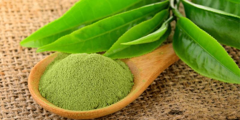 Tè Verde: tutto quello che c'è da sapere su proprietà, utilizzi, benefici e controindicazioni.