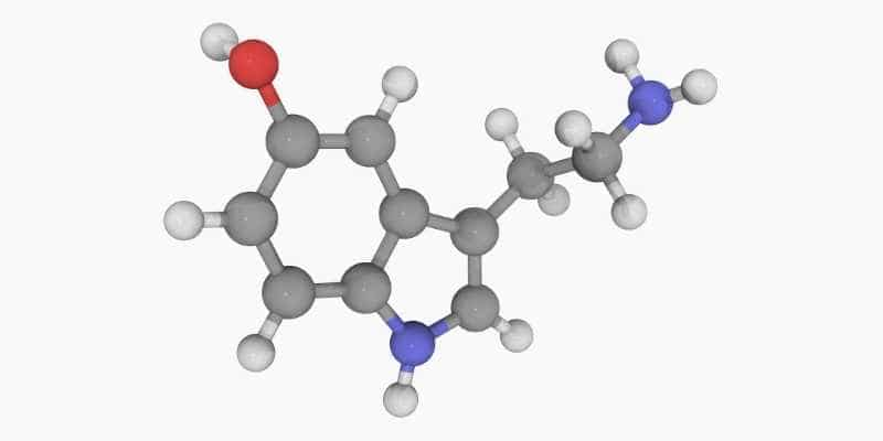 5 idrossitriptofano (5 HTP) _ serotonina