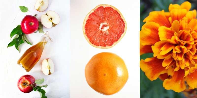 Cattivi odori intimi _ rimedi naturali _ aceto di mele, semi di pompelmo, calendula