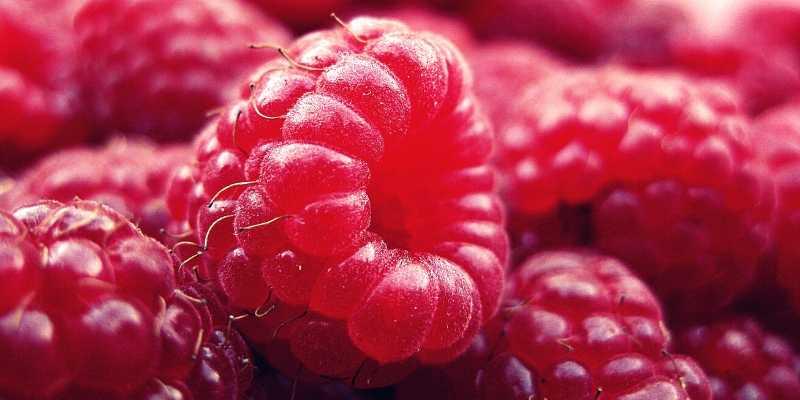Keto Bio Lampone ingredienti _ chetoni di lampone