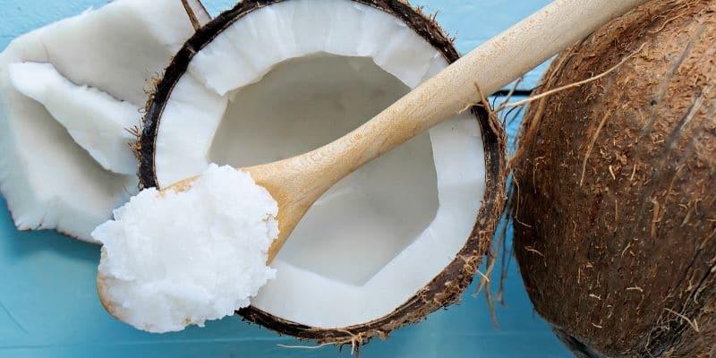 olio di cocco proprietà benefici e usi