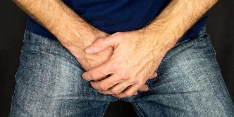 ossido nitrico erezione