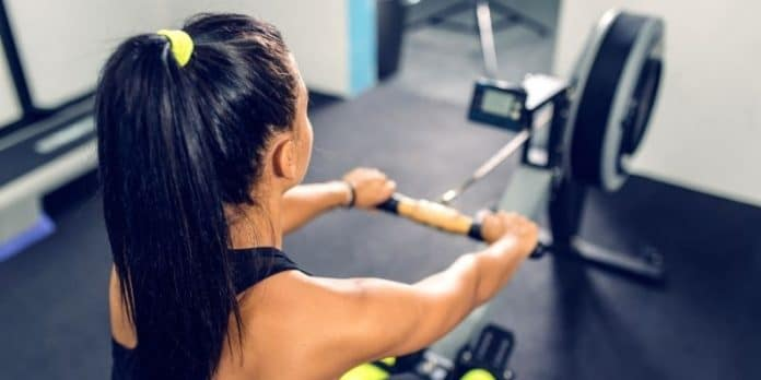 programma allenamento vogatore