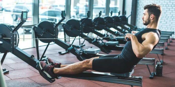vogatore muscoli interessati
