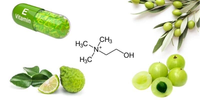 ingredienti presenti in cardio benessere colesterolo