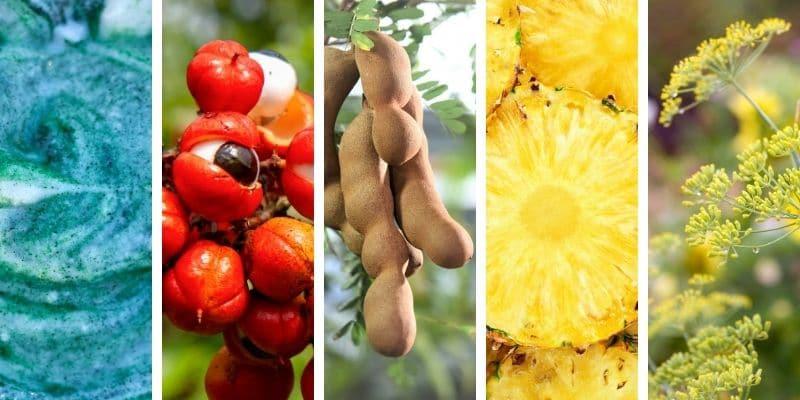 spirulina, guaranà, tamarindo, ananas, finocchio