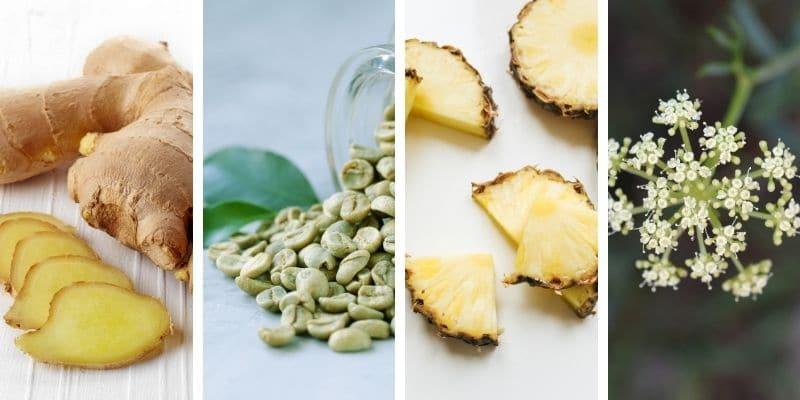 zenzero, caffè verde, ananas e finocchio marino