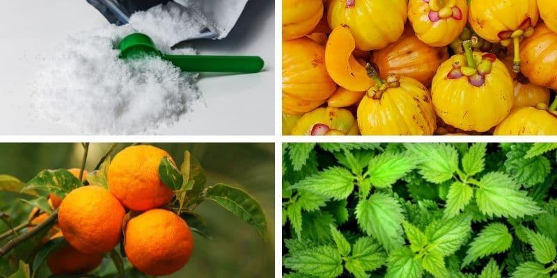 l carnitina, garcinia cambogia, arancia amara, ortica