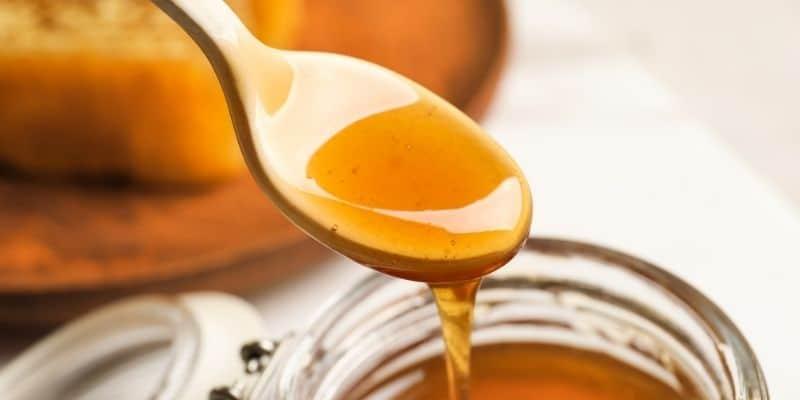 miele di manuka per arricchire i piatti