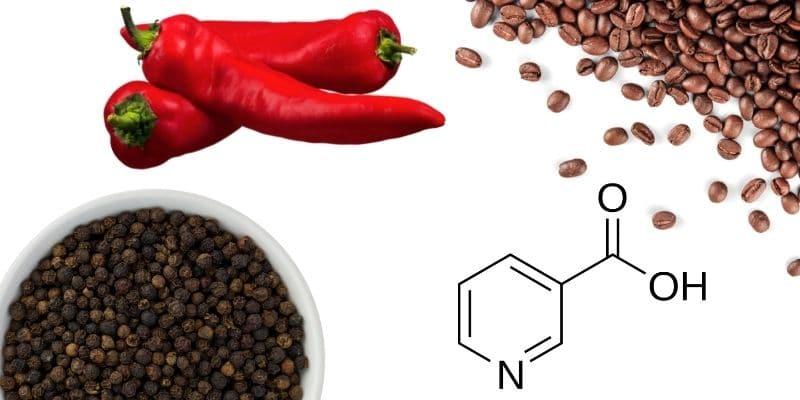 capsaicina, caffeina, niacina, piperina